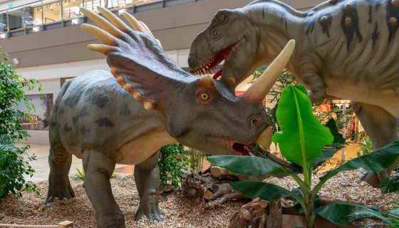 Zwei kämpfende Dinos