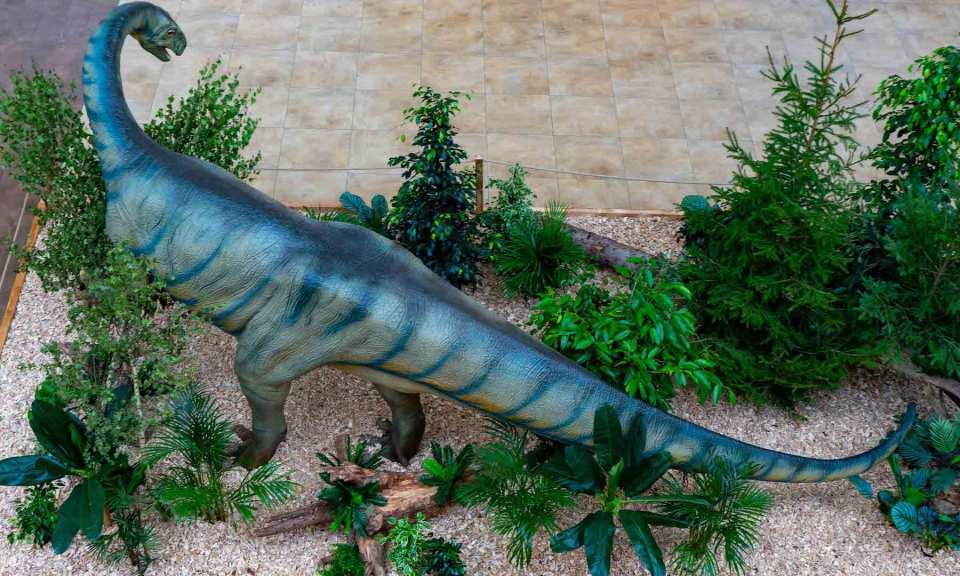 Größte dinosaurier aller zeiten der Größtes Landlebewesen